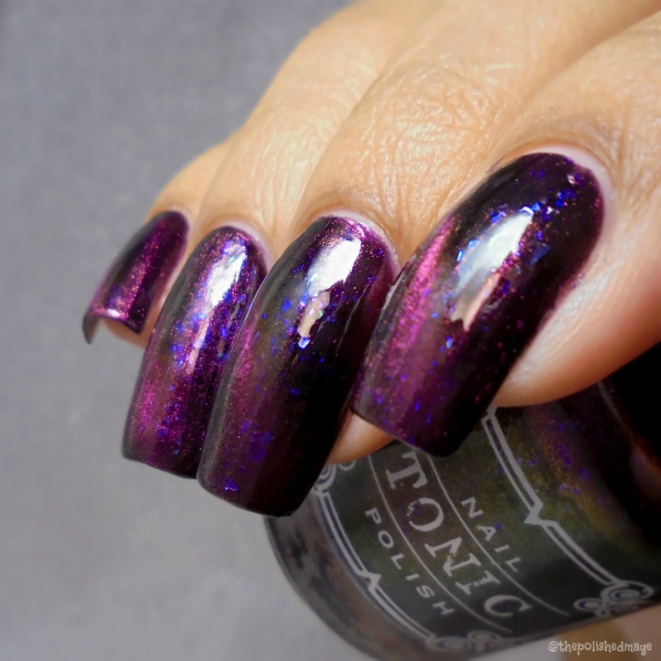 tonic polish zeppo 3
