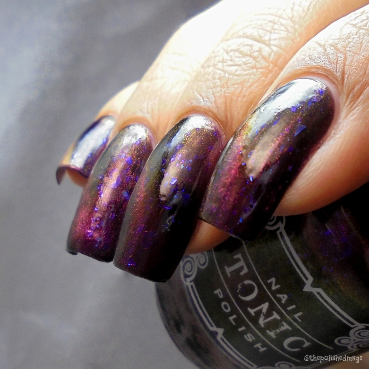 tonic polish zeppo 4