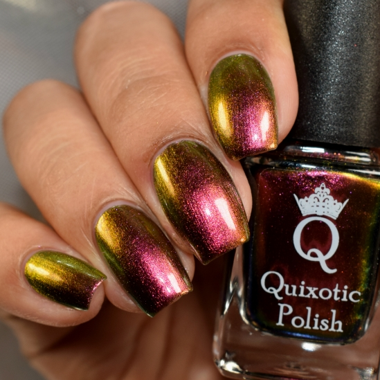 quixotic polish absolute monarch 5