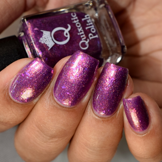quixotic polish homesick 5