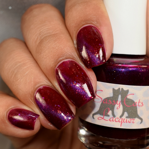 sassy cats lacquer mistakes 4