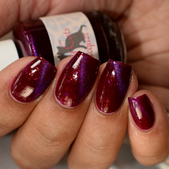 sassy cats lacquer mistakes 5