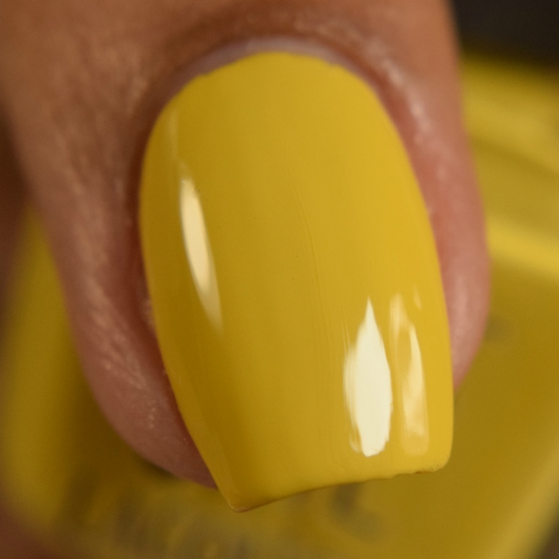 night owl lacquer it mustard been love