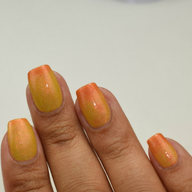 mlf lacquer thats all folks 5